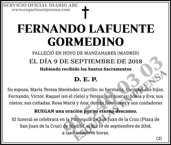 Fernando Lafuetne Gormedino